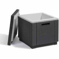 ICE-Cube Kühlbox graphit